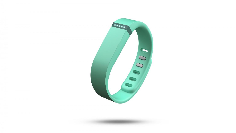 fitbit flex extra armband
